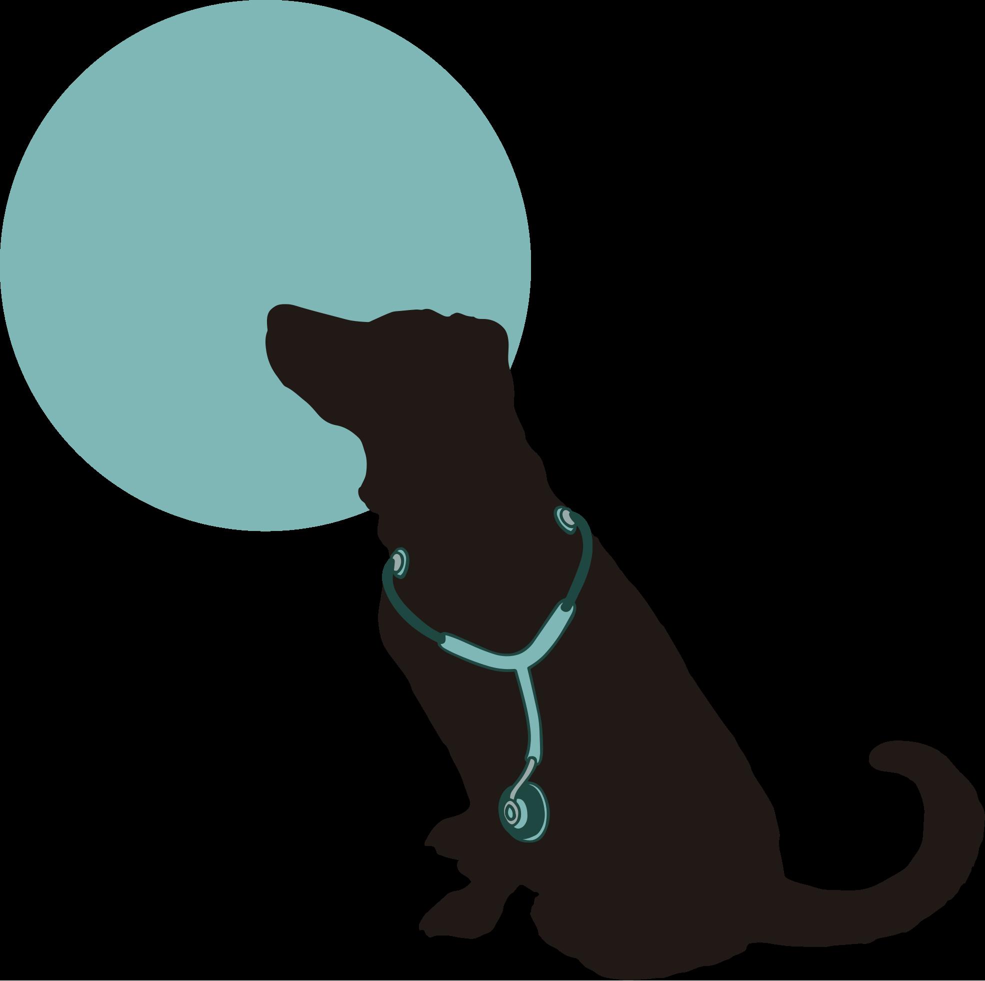 logotipo_biodogtor-1