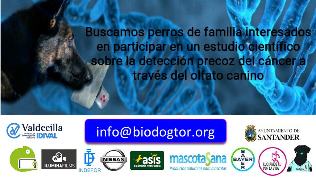 Buscamos perros para participar en nuestro estudio cientifico